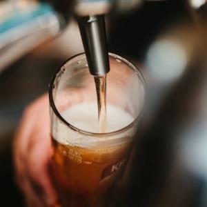 サブスクが利用できるおすすめ人気居酒屋5選!コスパ高く飲める【最新】