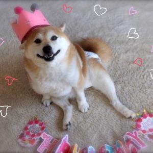 あんの7歳の誕生日、爆笑!ケーキでお祝い動画です♪