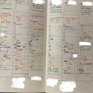 スリコの手帳に変えて一か月。さとうめぐみさんの手帳術を参考に使用中。