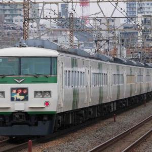 3月7日撮影 東海道線 平塚~大磯間 ラストランまであと少し( ;∀;)185系踊り子号と貨物列車を撮る