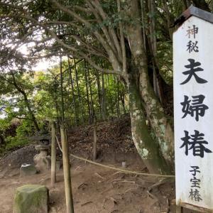 【神魂神社】【八重垣神社】【美保神社】#  27 スピ旅道