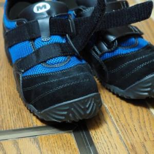 今 使っている靴