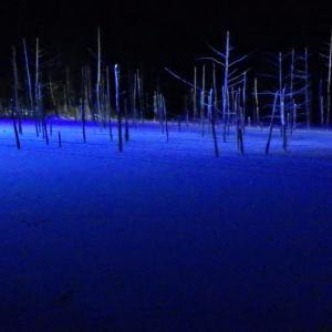 ハイエースの車中泊で巡る 年末年始  北海道16日間 ④ 旭山動物園と青い池 冬バージョン