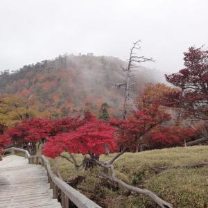 時は秋、山に紅葉、車中泊! 大台ヶ原は続くよ、どこまでも。②