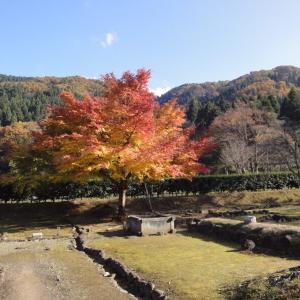 風流人のつもりが、時に流され、山中温泉、一乗谷城!果てはカニ祭り。