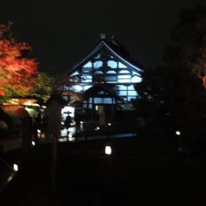 京都 高台寺 秋の夜間拝観です!