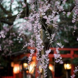 日本の行事を英語で紹介|季節毎の行事一覧と行事の内容を説明