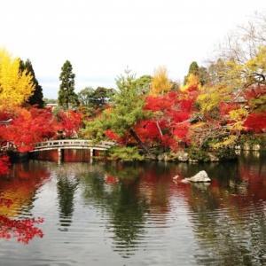 日本の観光地を英語で紹介|東京や京都などの観光地を英語で説明