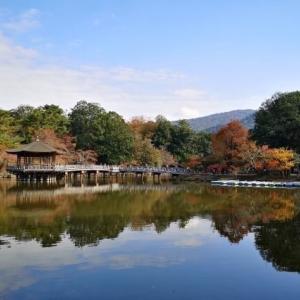 奈良を英語で説明|観光地として有名な古都を6つの例文で紹介