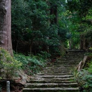 熊野古道を英語で説明|熊野三山を参拝しに行く世界遺産の道を紹介