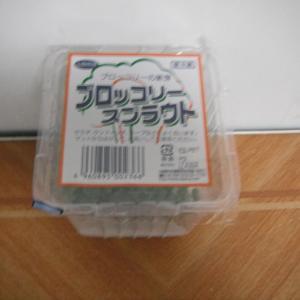 スルフォラファンで有名なブロッコリースプラウトは35円(税抜き)