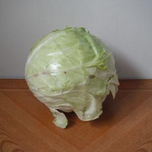 まるで家畜用のエサ!傷んだキャベツが32.4円(税抜き30円)で売られていた。