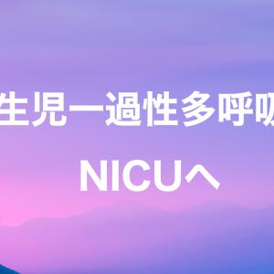 新生児一過性多呼吸でNICUへ(原因・症状・後遺症はある?)