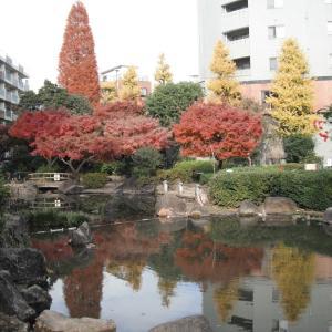 東京大学出身者もいろいろです。