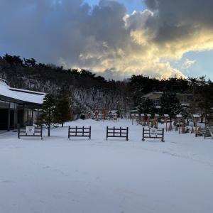 明けましておめでとう 高山稲荷神社その1
