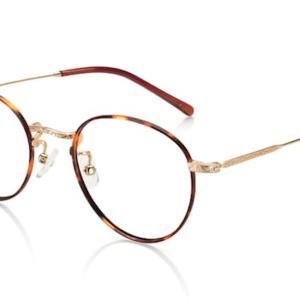 持ち物リスト18:メガネ