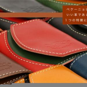 持ち物リスト22:財布 ~ミニマリスト向け財布、ペケーニョを使うことで得られたもの~