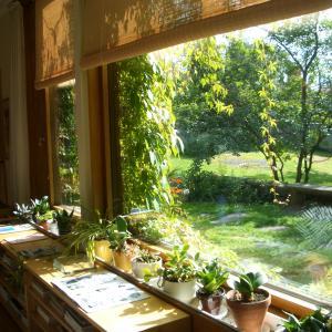 【北欧的空間が好きな建築士の自宅設計⑦】プランニング前に北欧フィンランドへ旅して影響を受けた空間-Alver Aaltoの自邸-