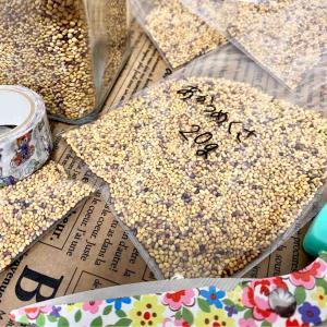 アカツメクサの種子をPayPayフリマで販売