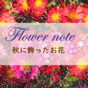 秋に飾ったお花まとめ:お花ノート
