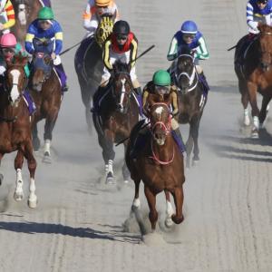 【成績発表】データ分析による競馬予想の結果【2021年2月】