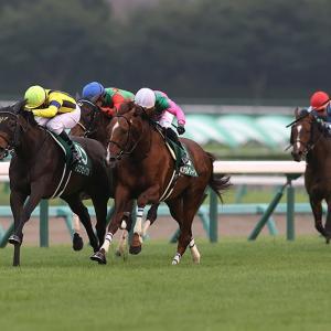 【競馬で副収入】京成杯オータムハンデGⅢ【2021】