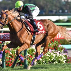 【競馬で副収入】セントライト記念GⅡ【2021】