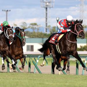 【競馬で副収入】神戸新聞杯GⅡ【2021】