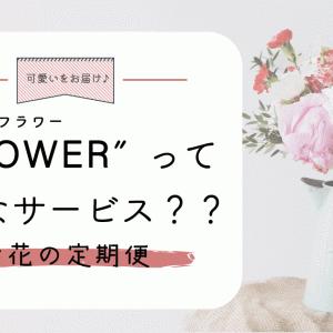 [お花の定期便]FLOWERってどんなサービス??わかりやすく解説します