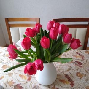 ぺピートの誕生日 ママの花