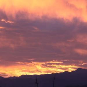 2020-11/20(金)  朝の空が燃えている‼️