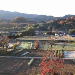 2020-11/22(日)南の山は紅葉で萌えています~♪     クロの体調は!?