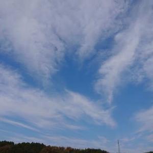 2020-12/3(木) オーロラのような雲⛅晴れ☀️
