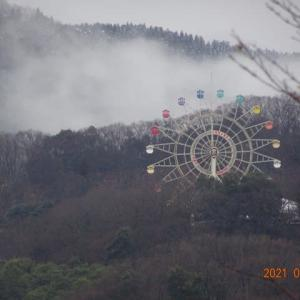昨日の午後・淡雪になって~    21-1/25(月)