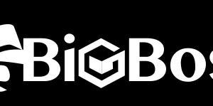 【BigBoss徹底分析】実際にBigBossを使ってみてわかること
