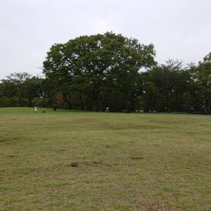 これが噂の南チームの放課後自主練習!平日のゲームの時間を楽しく野球!