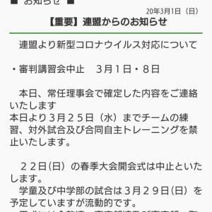 やはりコロナウイルスで町田市少年野球連盟決定、3月25日まで活動禁止