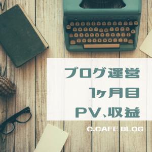 [運営報告]ブログ1ヶ月目のPV,収益について