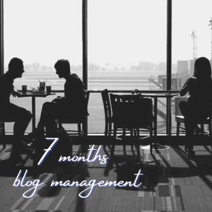 [120記事 運営報告]ブログ7ヶ月目のPV,収益について。