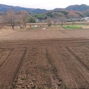 畑の耕う2020.12.13