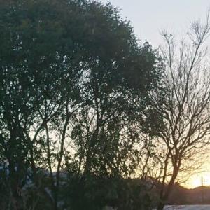 2021年大寒の日 日没2021.1.20