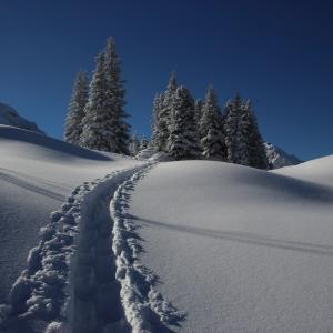 雪道でも安心!雪用ランニングシューズ8選