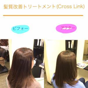 髪質改善トリートメント(Cross Link)