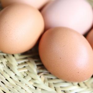 卵は常温保管できるのか?