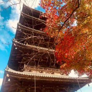 豪渓紅葉マラニック!近水園・五重塔、パンにアイスに、うどんまで秋の紅葉大満喫!!