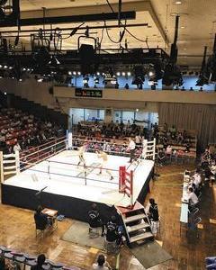 日本ボクシングのガイドライン