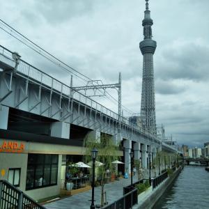 東京ミズマチ DEUD EX MACHINA ASAKUSA(デウスエクスマキナアサクサ)でランチ 浅草散歩をしてきました