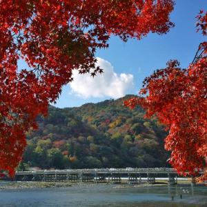 【京都紅葉情報】嵐山「渡月橋」の見どころ