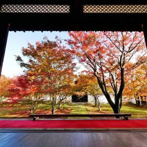 【京都紅葉情報】2020年最新 本当は秘密にしておきたい京都の「穴場」紅葉名所5選