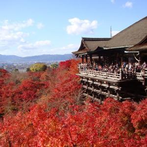 【京都紅葉情報】一生に一度は訪れたい京都の「王道」紅葉名所5選